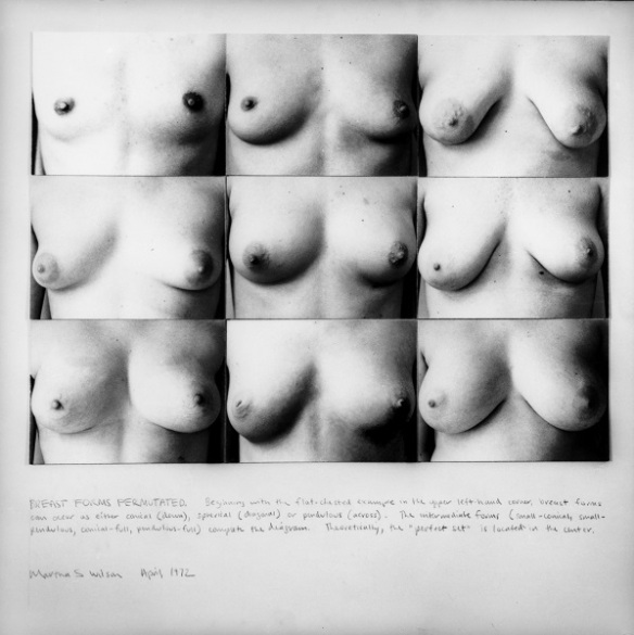 martha_wilson_breast_forms_image